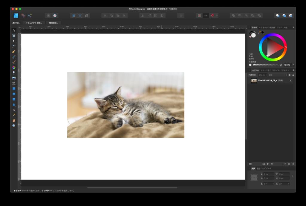 猫の画像を配置